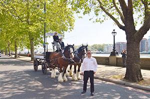 Fraser & Ellis Ltd centenary horses